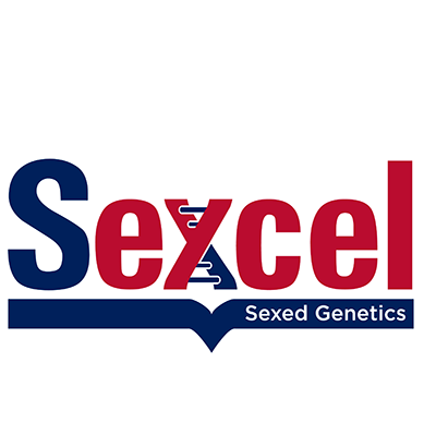 sexcel-logo-croped-1