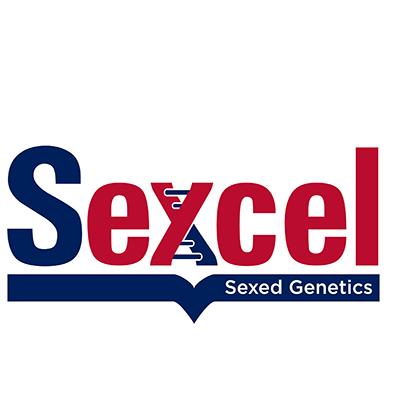 sexcel